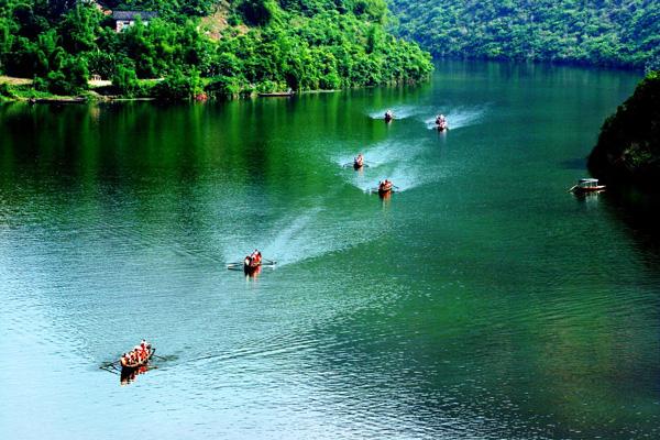 Shennong-Stream