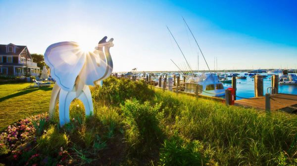 white-elephant-nantucket
