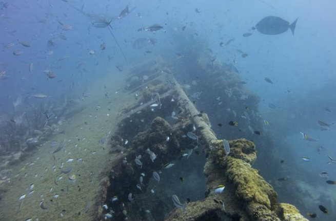 Discover-the-SS-Yongala-Shipwreck