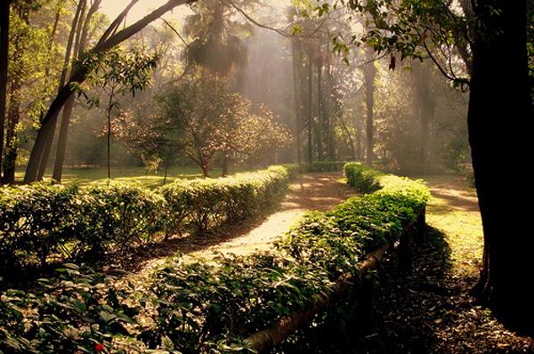 Ibirapuera-Park