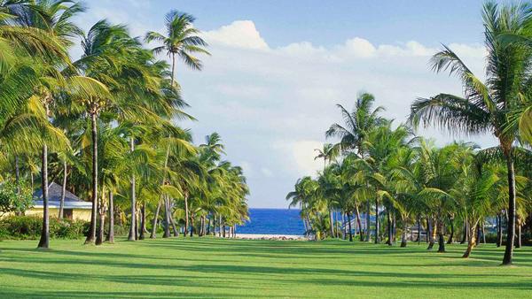 Nisbet-Plantation-Beach-Club