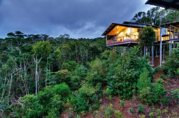 O-Reillys-Rainforest-Retreat