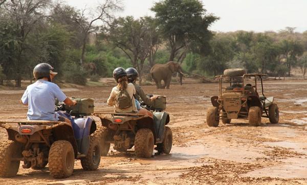 Safari-on-a-Quad-Bike