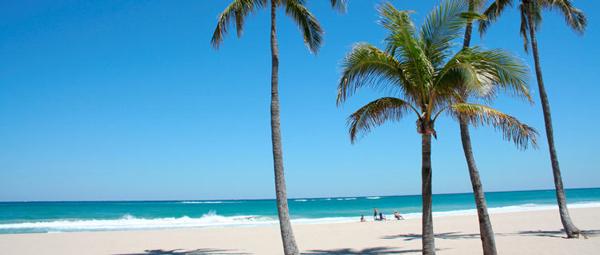 palm-beach-hawaii-3105