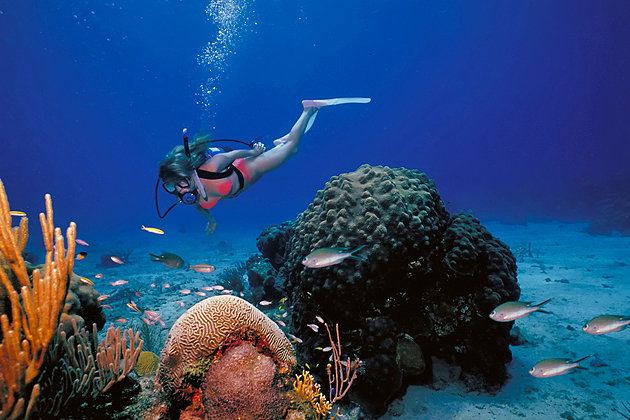 us-virgin-islands-st-croix-buck-island-reef-national-monument